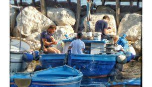 Pescatori a Marina Grande 2016